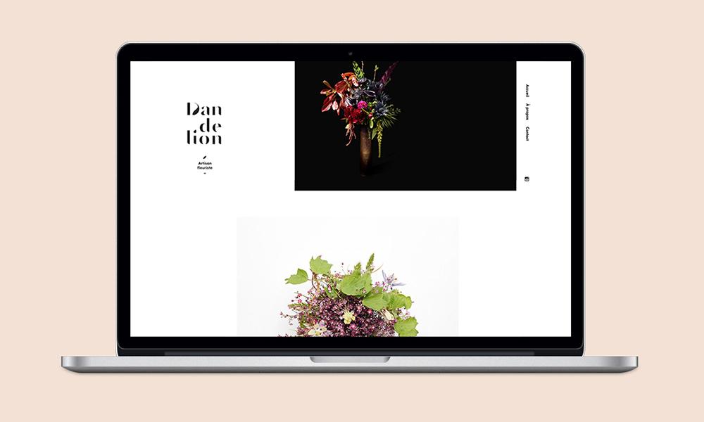 dandelion_site_home_02