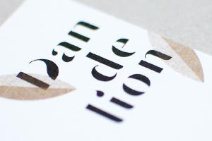 webdesign création logo identite de marque image de marque hirundi studio Dandelion
