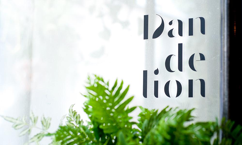 dandelion_vitrine